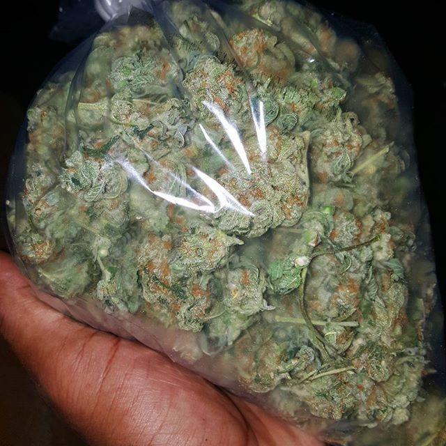 ❥queennn313 | g a n j a ❥ | Diesel weed, Weed, Blue dream