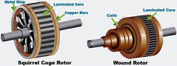 Squirrel Cage Motor Wiring Diagram