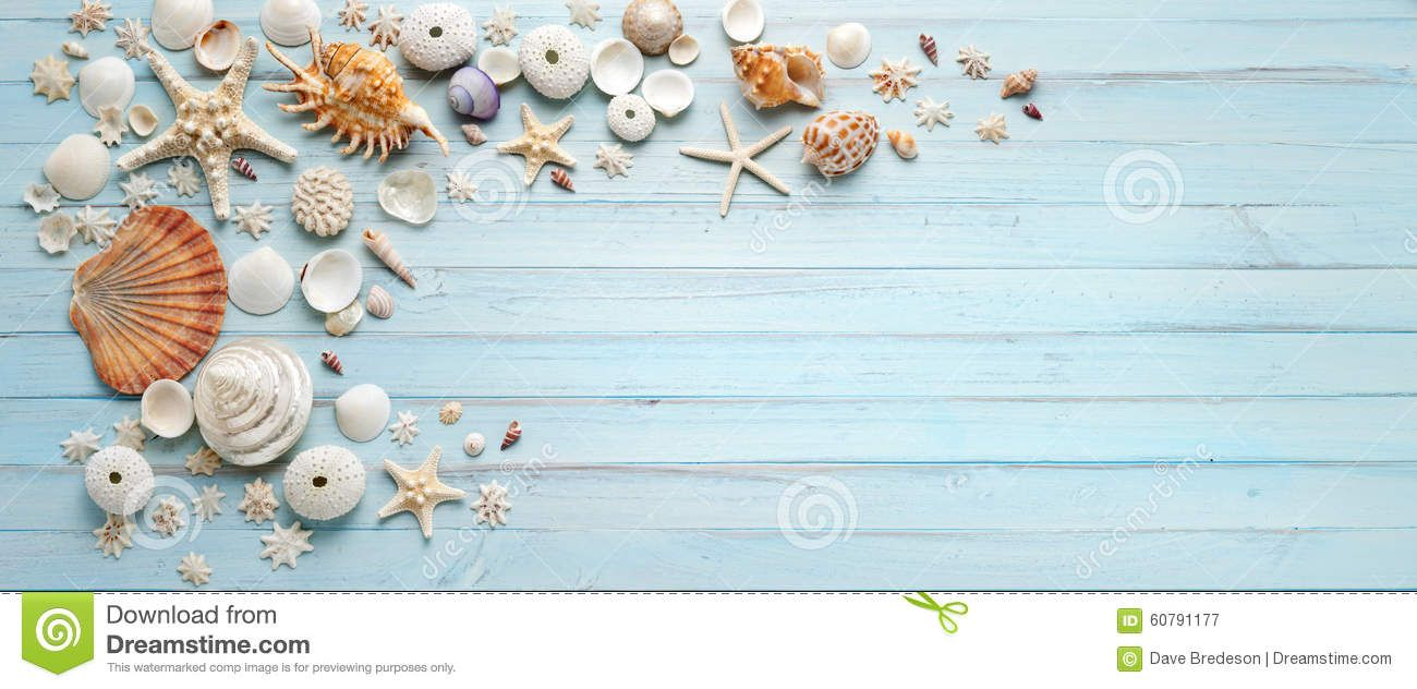 3802c9cca Banner Shells Blue Wood Background - Download From Over 61 Million High  Quality Stock Photos