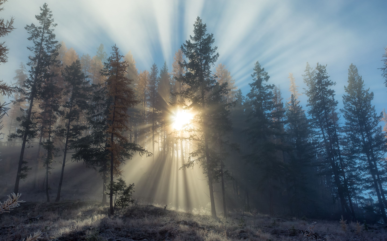 Autumn Sunrise Optimised For The Retina Display