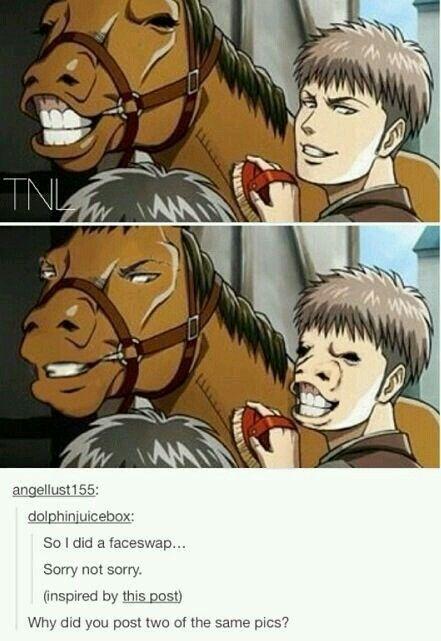 Attack on titan meme, Attack on titan funny, Anime funny