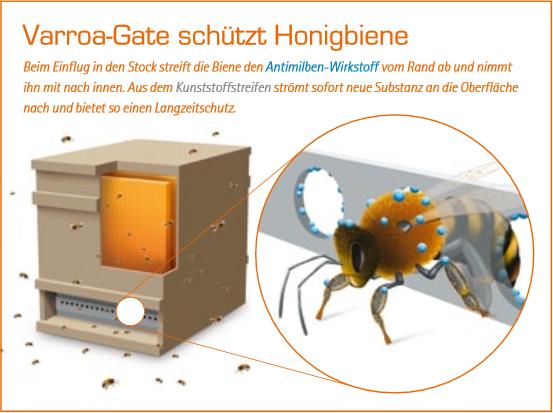varroa gate sch tzt honigbiene bienen pinterest bienen imker und honigbiene. Black Bedroom Furniture Sets. Home Design Ideas