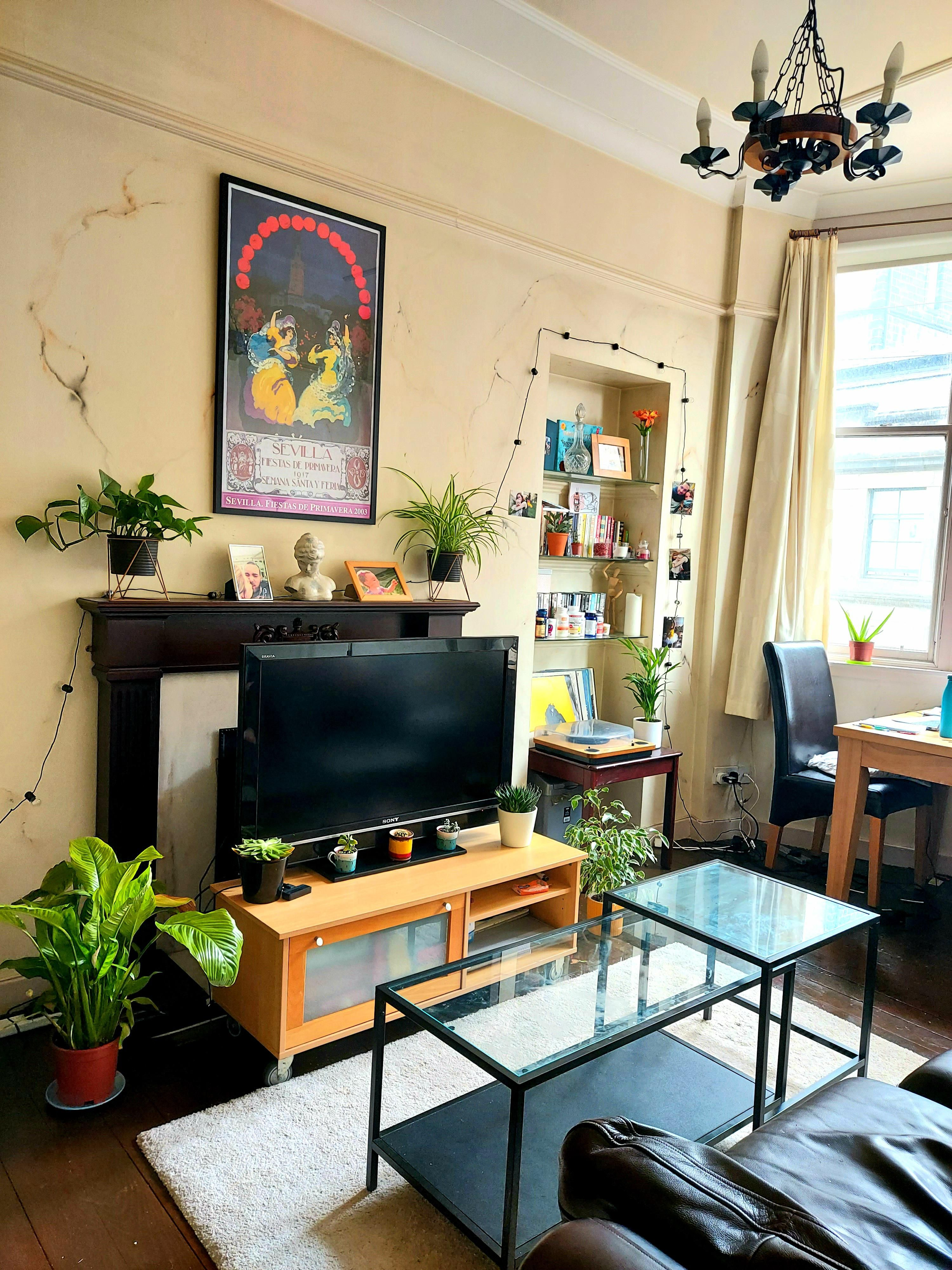 Our Cosy Wee Living Room In Glasgow Scotland Amazing What Some Plants And A Pop Of Colour Can Do Home Decor Living Room House Interior The living rooms glasgow