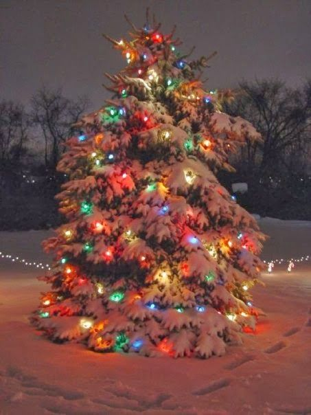 Outdoor Christmas Tree with Snow Christmas Trees Decorated Outside