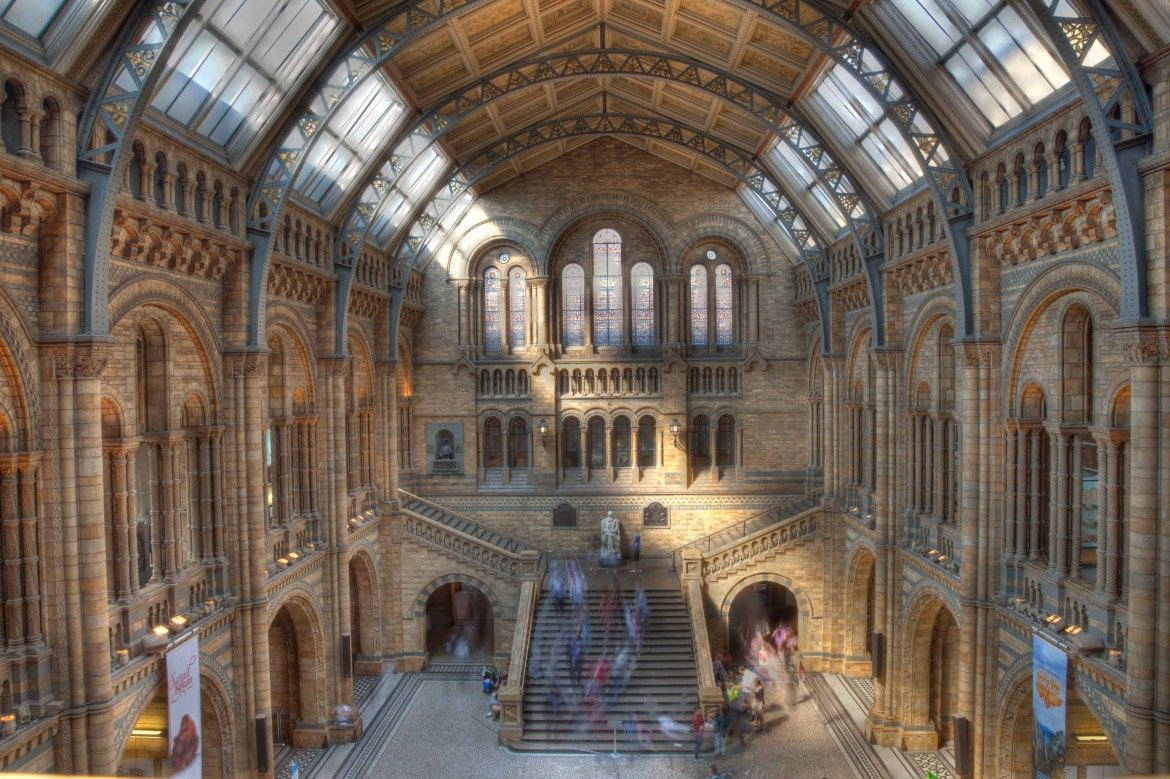 20110422_140518_Natural_History_Museum_Main_Hall-1170x779.jpeg (1170×779)