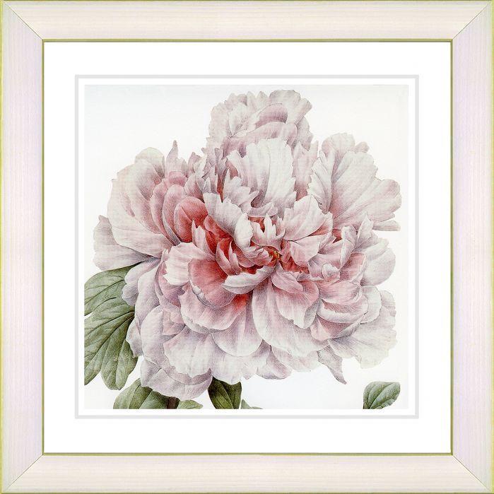 Vintage Botanical No. 54W by Zhee Singer Framed Giclee Print Fine Wall Art