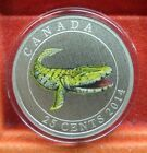 2014 25 Cent Coloured Coin TIKTAALIK GLOW IN THE DARK Prehistoric Creature #Coins&PaperMoney #prehistoriccreatures