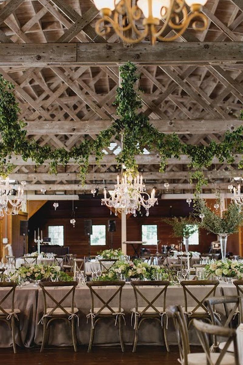 44++ Wedding tent rental cost ontario information
