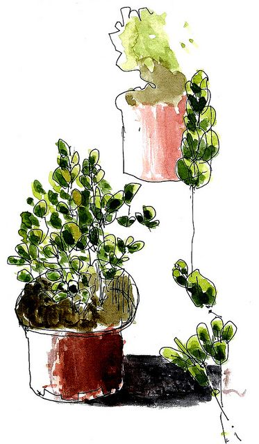 love the simple little lines with a splash of watercolor. -- from an open [sketch] book