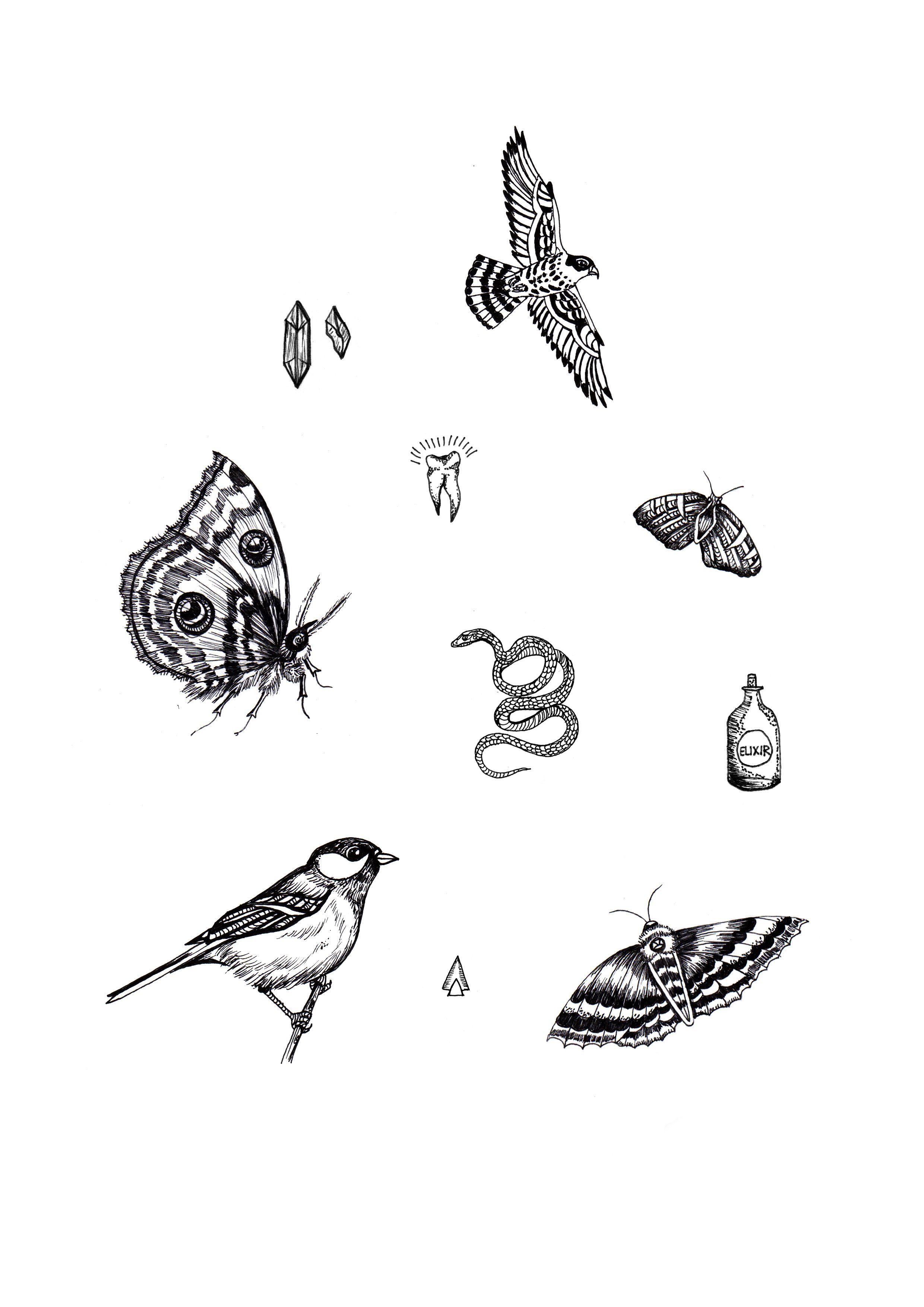 Little Treasures by Daniela Roessler #illustration