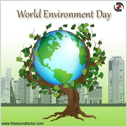Today I World Environment Day Let S Promise To Take Care Of It In The Best Way We Can Nature Essay On