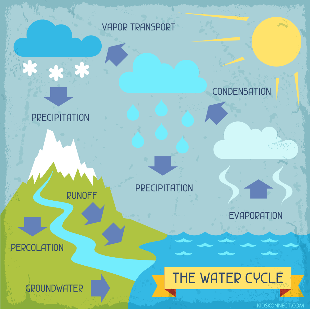 Toddler Water Cycle Images Google Search Water Cycle Water Cycle Poster Water Cycle Project