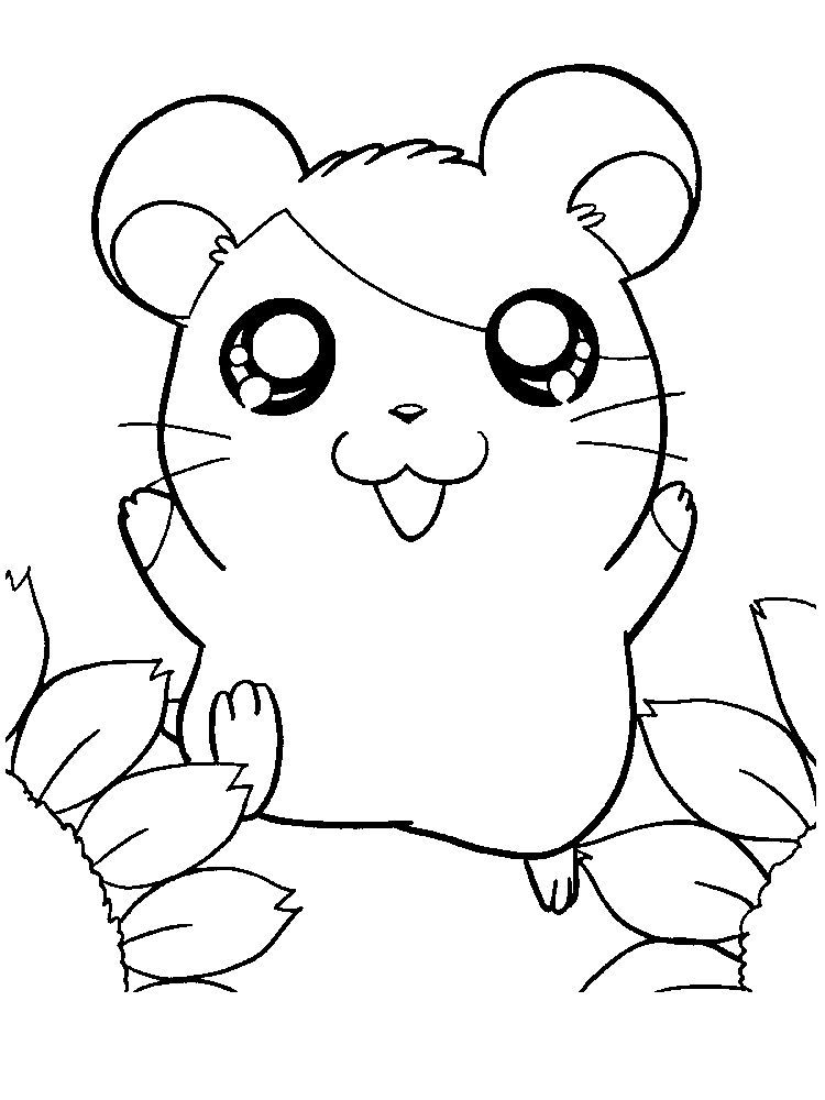 Cute Hamster Coloring Pages Hamsters Small Animals That For Some People Look Like Mice Are Sta Animal Coloring Pages Cute Coloring Pages Snake Coloring Pages