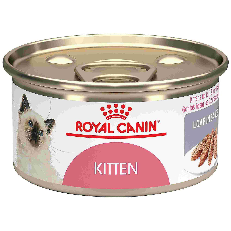 Royal Canin Feline Health Nutrition Loaf In Sauce Wet Kitten Food 5 8 Oz Case Of 24 Petco In 2020 Feline Health Kitten Food Health And Nutrition