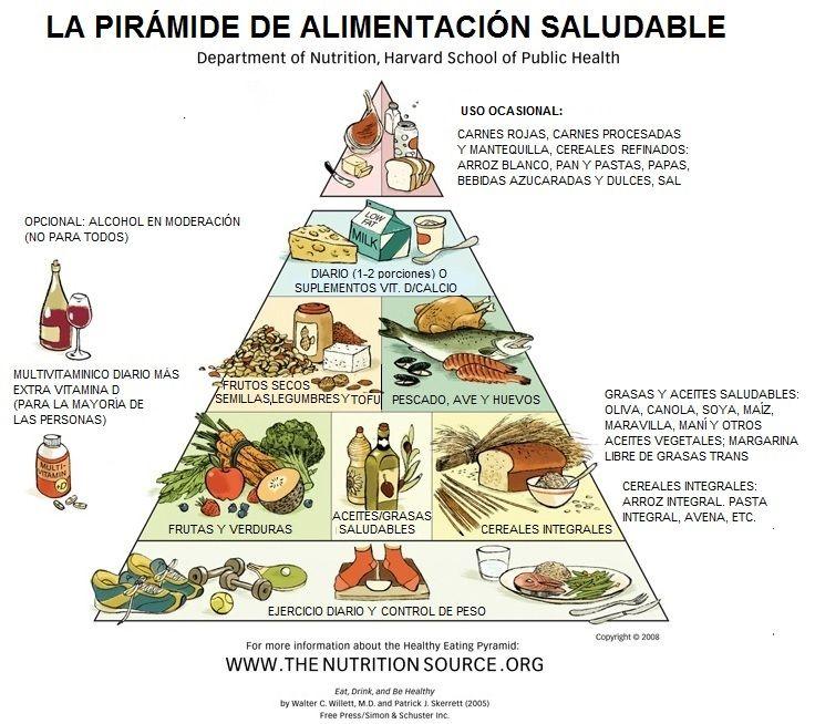 guía de alimentación saludable de harvard