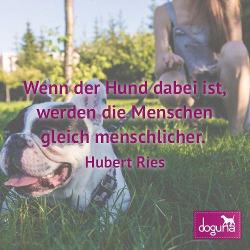 Wenn Der Hund Dabei Ist Werden Die Menschen Gleich Menschlicher Hubert Ries Hund Hunde Dog Dogs Dogsofinstagram Love Beau Movie Posters Poster Movies