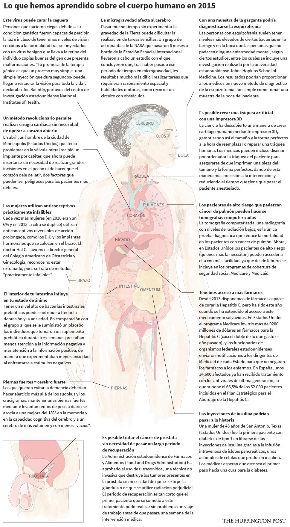 12 cosas que hemos aprendido sobre el cuerpo humano en 2015, vía El HuffigtonPost