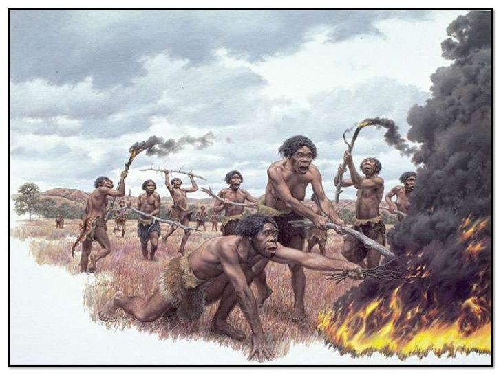 Homo erectus Learning to Utilize Natural Fire - Jay Matternes