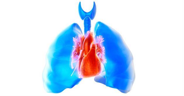 Por qué ignorar la Hipertensión arterial le costará las ventas
