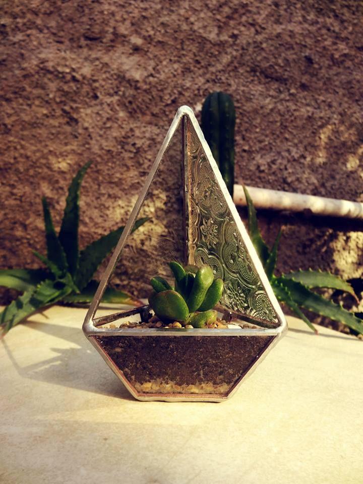#deco #design #glass #vidrio #suculentas #cactus #nature #jadín