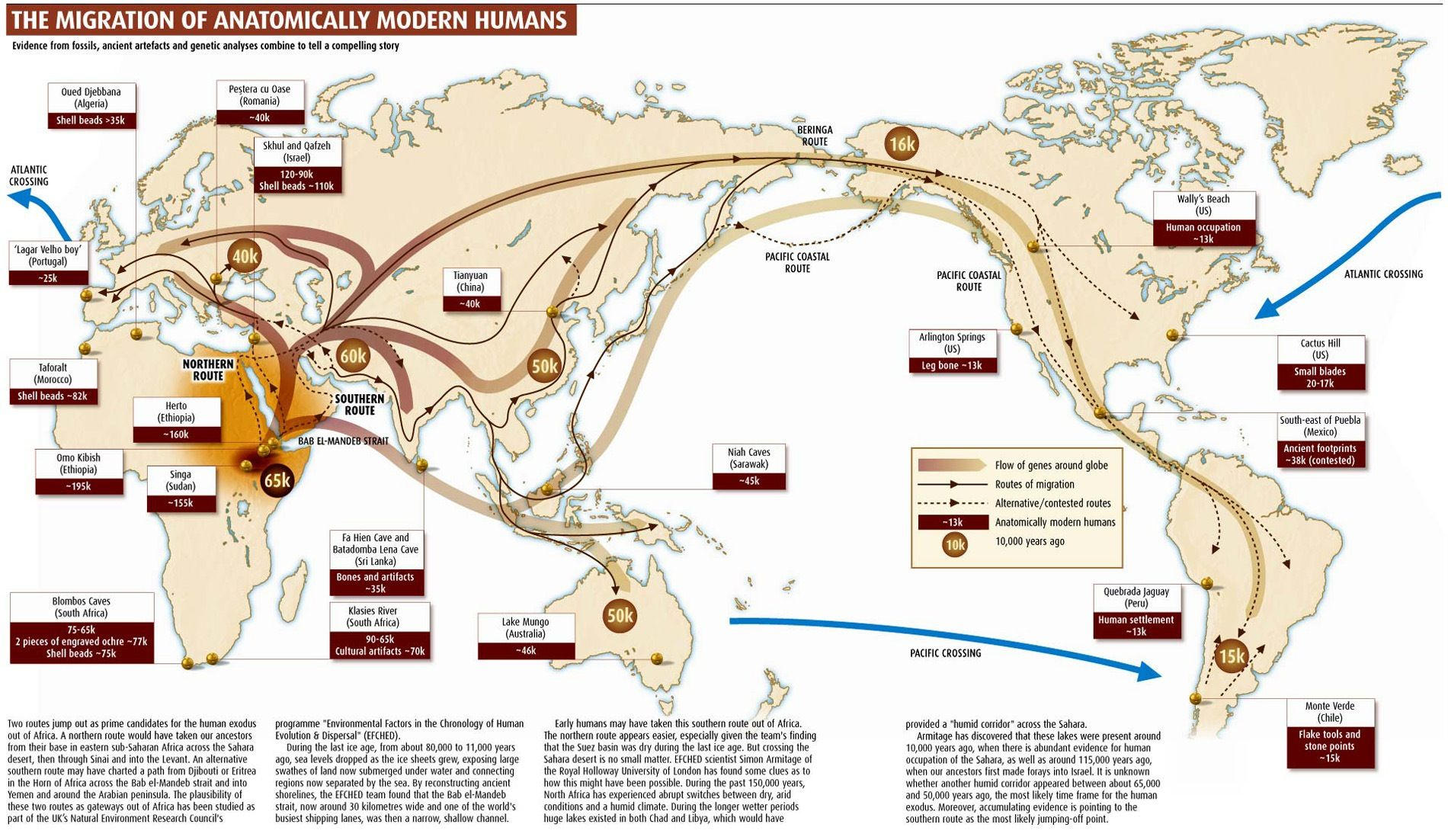 Human Migration Map   an infographic of the two predominant