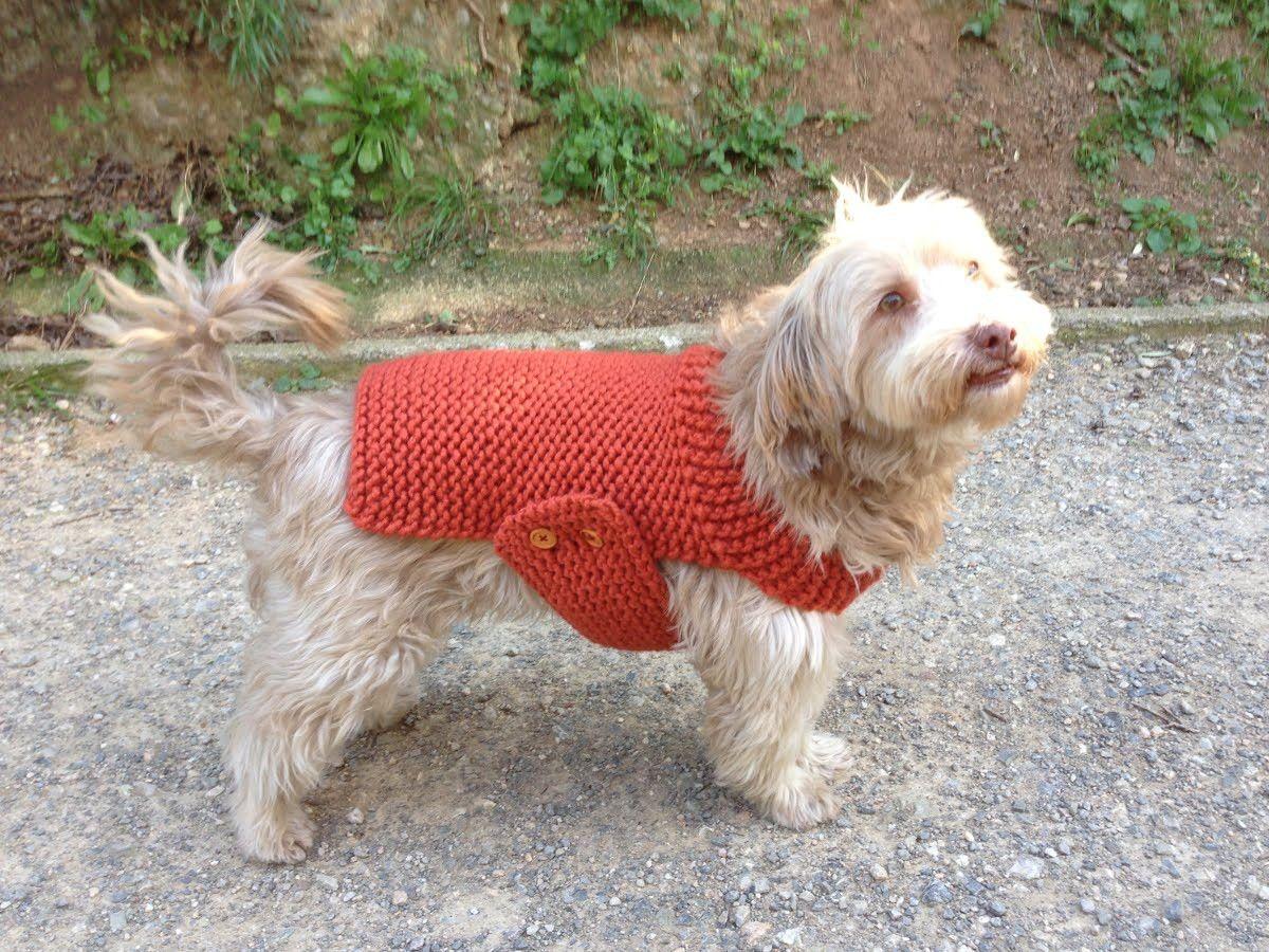 How to Loom Knit a Dog Sweater. Coat (DIY Tutorial)   Handarbeiten ...