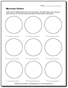 Printables Microscope Lab Worksheet 1000 images about science microscopes on pinterest green grapes homeschool and montessori