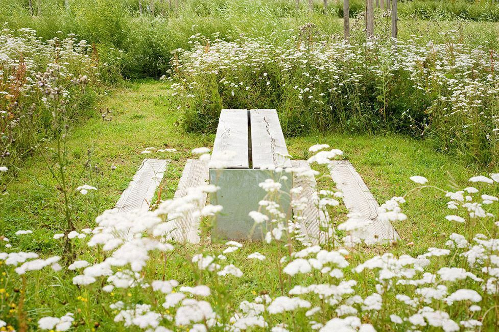 Rock Solid Advice On How To Spruce Up Your Landscaping Architecture Du Paysage Paysagiste Amenagement Paysager
