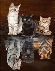 Photo of Sammytrends.de #Katzen – Katzen