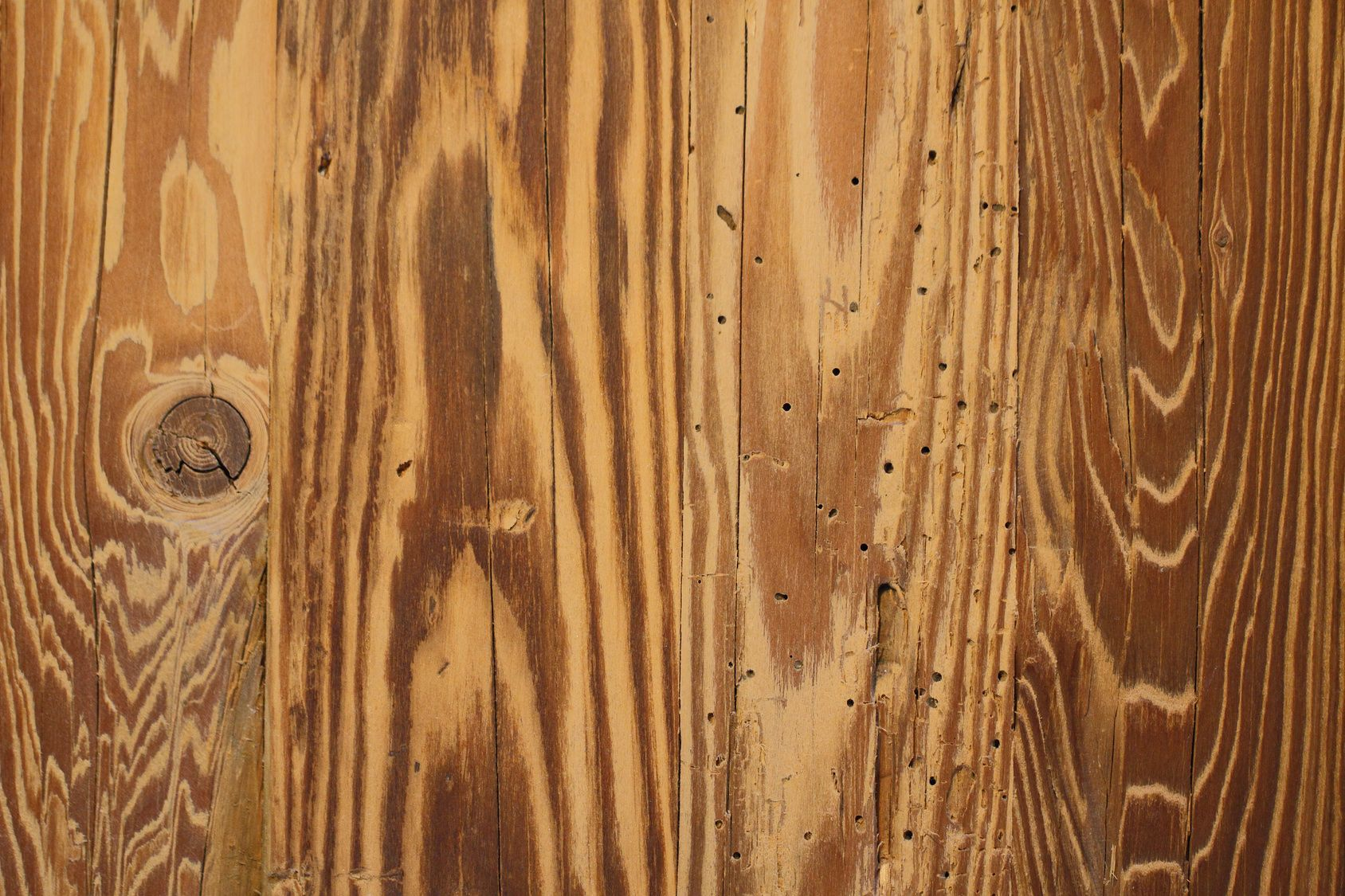 Holzwurm In Mobeln Bekampfen Frag Mutti Holzwurm Holzwurmer Bekampfen Holz