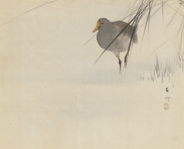 Japanese Art | Large-billed Bird and Grasses | F2004.25
