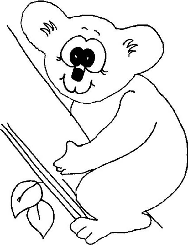 Free Koala Coloring Pages, Download Free Clip Art, Free Clip Art ... | 784x600