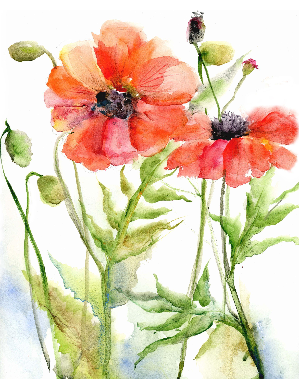 Poppies Poppy Watercolor Art Print orange flower Poppy art print floral watercolor art