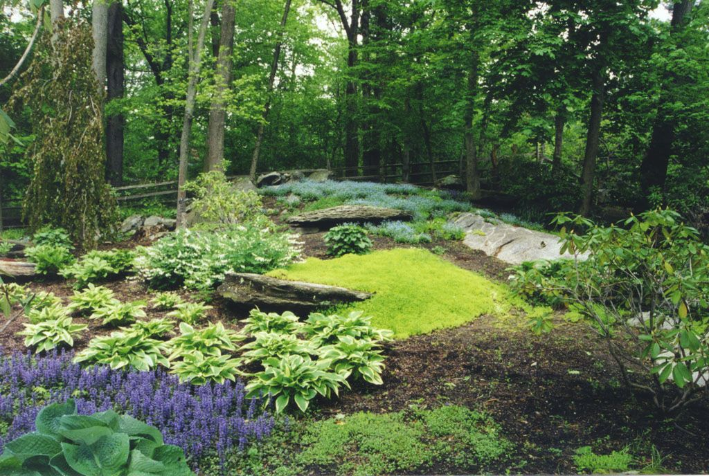 Perennial shade garden in greenwich ct this perennial for Landscape design perennial garden