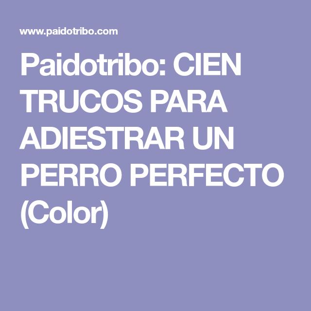 CIEN TRUCOS PARA ADIESTRAR UN PERRO PERFECTO (Color) (con