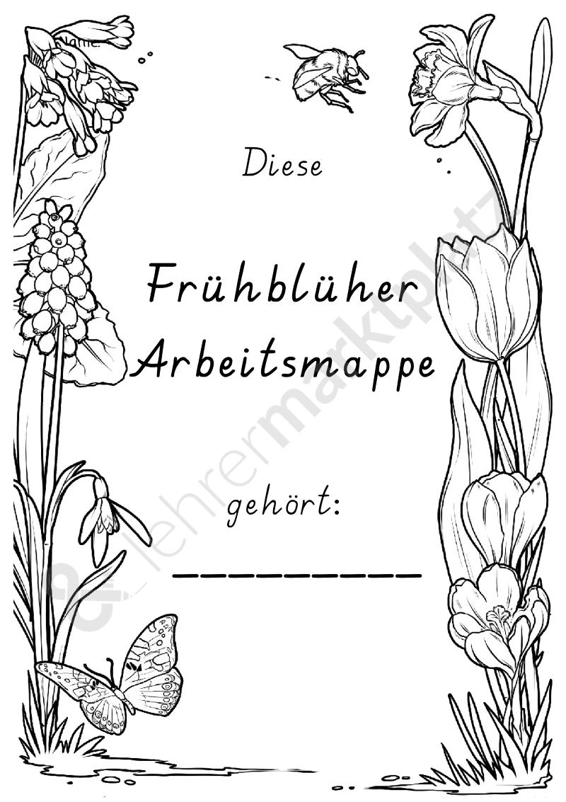 Frühblüher Arbeitsmappe | Frühblüher | Pinterest | Zwiebel, Glänzend ...