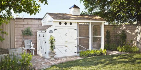 How To Build a Chicken Coop - Plans to Build a Chicken Coop