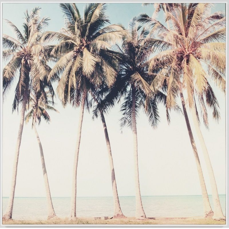 Vintage Palms framed canvas print. Anonymous Australian Photographer ...