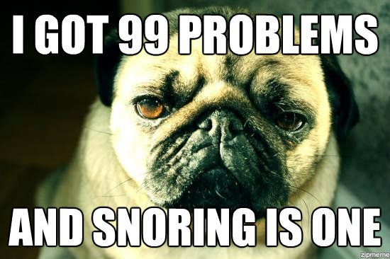 I Got 99 Problems And Snoring Is One Pugs Funny