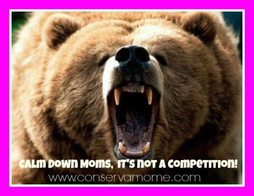 Nice Calm Down Moms, Itu0027s Not A Competition!   ConservaMom. Anger QuotesEdm  GirlsGrizzly BearsBear WallpaperMy ...