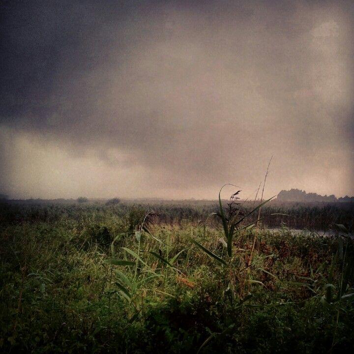 Apocolyptic weather. RSPB Lakenheath Fen.