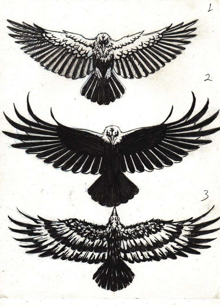 Crow Tattoo Designs By Marcahix Deviantart Com On Deviantart