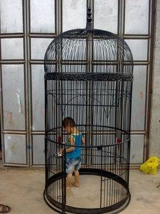 Wrought iron bird cage parrot bird cage Large bird cage decoration wedding props