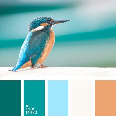celeste vivo, color aguamarina, color arena, color camello, color