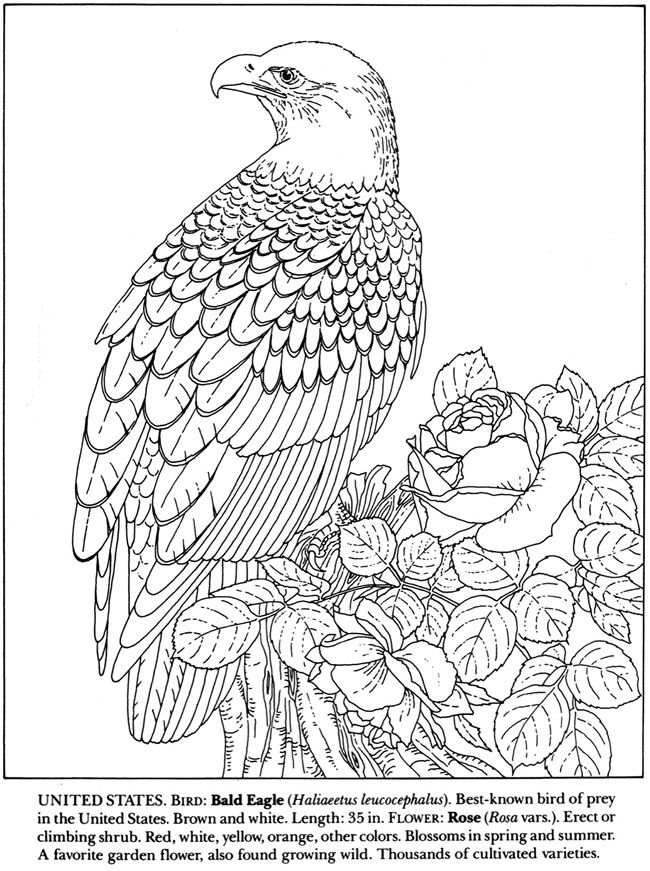 coloring | Coloring Pages | Pinterest | Colorear, Patrones de ...