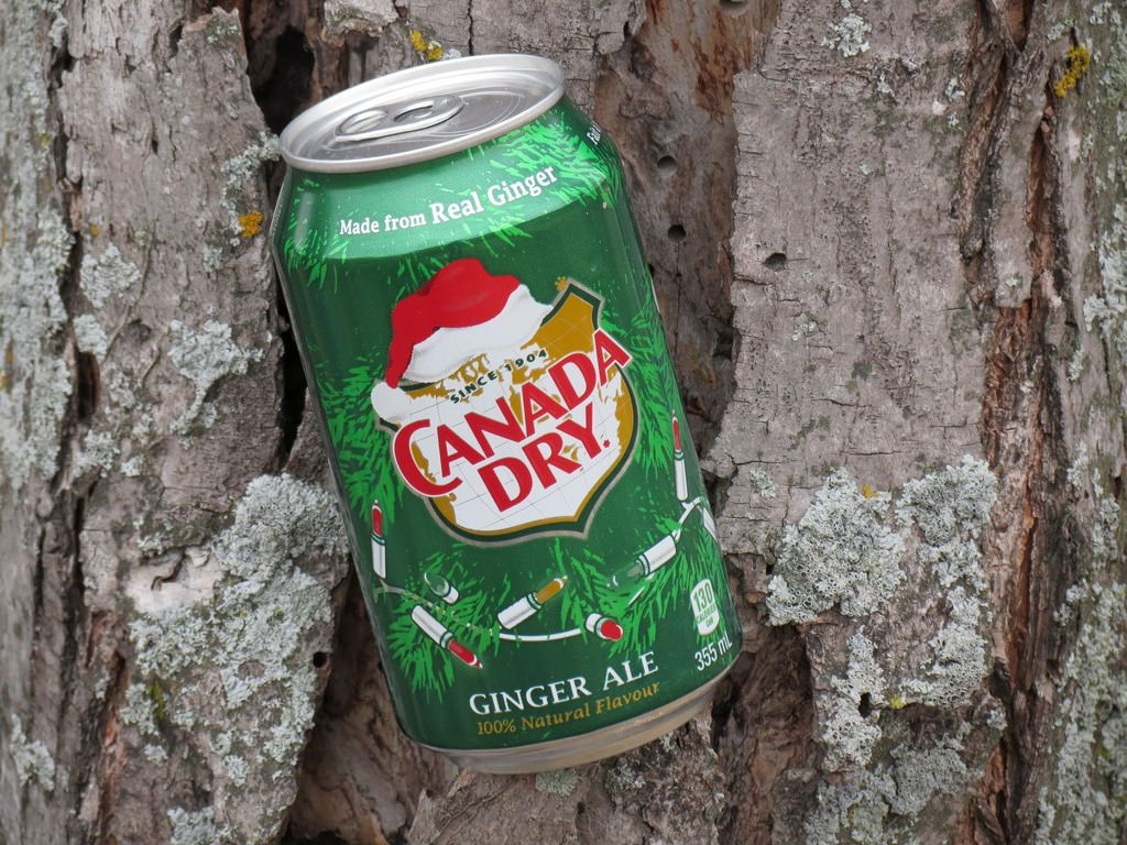 Canada Dry tree | by The Art of Nature, Canada Lands