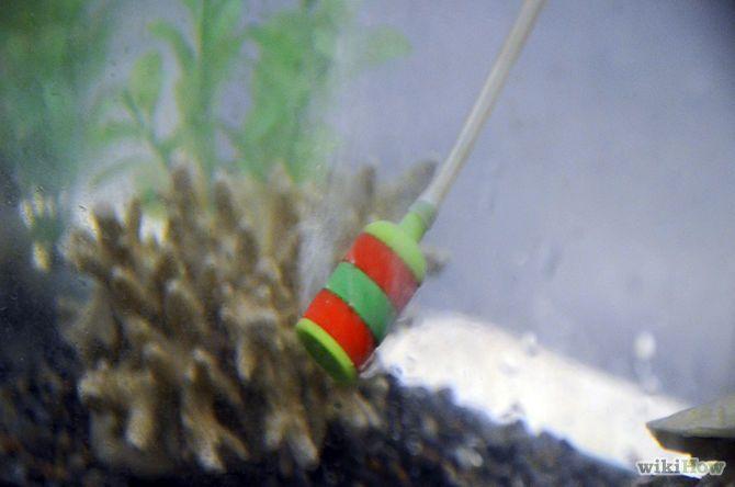 Fix cloudy aquarium water aquariums fish aquariums and for How to fix a cloudy fish tank