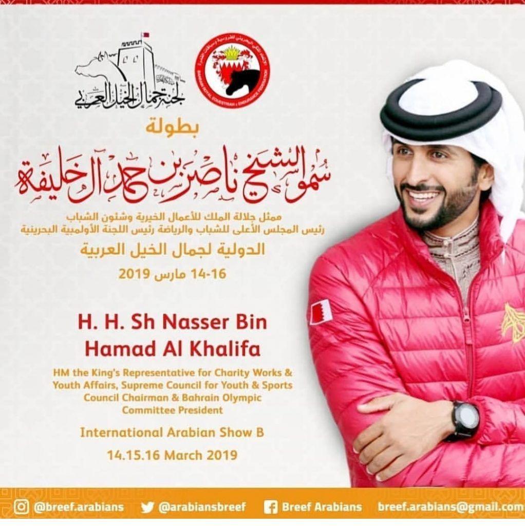 النسخة الثالثة لبطولة ناصر بن حمد آل خليفه لجمال الخيل العربية بالبحرين في 14 مارس Arabian Horse Arabians Horses