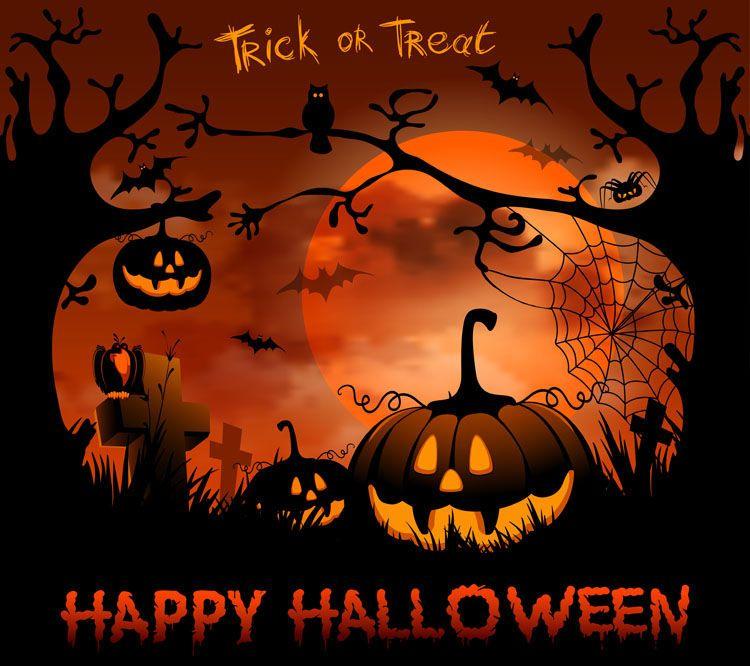 Trick Or Treat, Happy Halloween Halloween Halloween Pictures Happy Halloween  Halloween Images Happy Halloween Quotes
