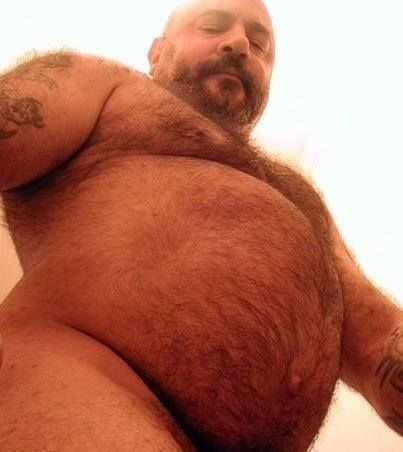 Gay tumblr bear